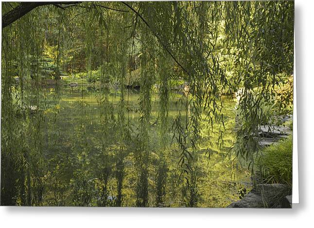 Peeking Through The Willows Greeting Card by Linda Geiger