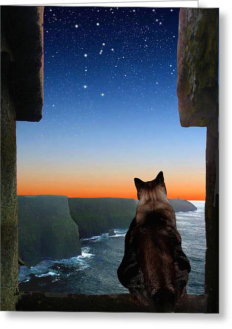 Pegasus Over The Cliffs Of Moher Greeting Card by Kathleen Horner