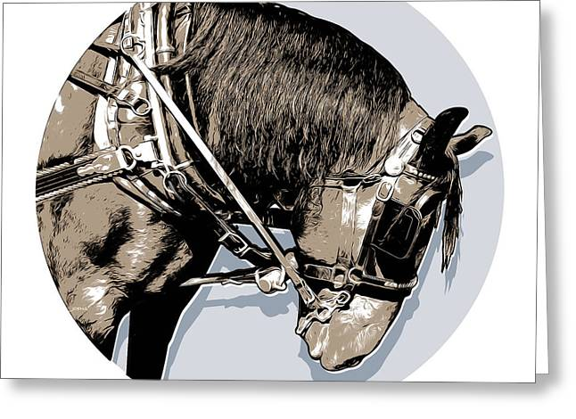 Pei Tour Horse Greeting Card by Greg Joens