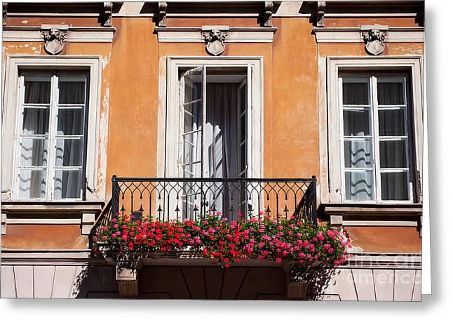 Pelargonium Peltatum Flowers On Balcony  Greeting Card by Arletta Cwalina