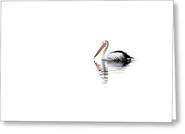 Pelican Adrift Greeting Card by Az Jackson
