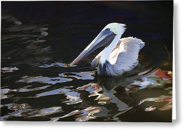 Pelican II Oil Painting Greeting Card