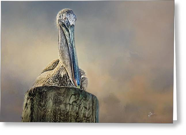Pelican In Paradise Greeting Card by TK Goforth