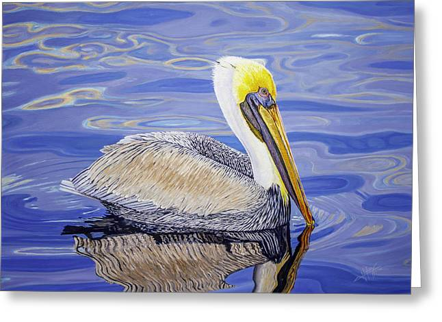 Pelican  Greeting Card by Manuel Lopez