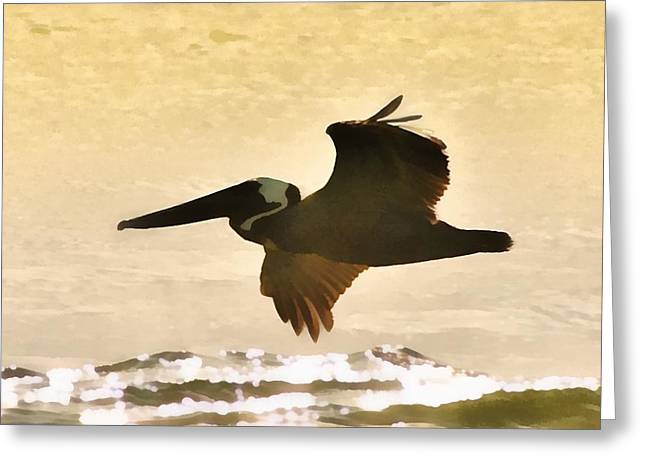 Pelican Patrol Greeting Card