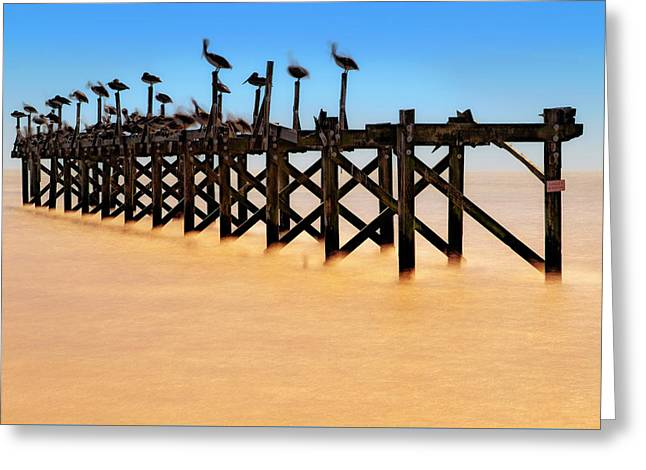 Greeting Card featuring the photograph Pelican Pier Near Pass Christian - Mississippi by Jason Politte
