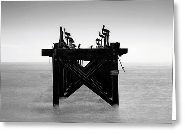 Greeting Card featuring the photograph Pelican Pier - Pass Christian - Mississippi by Jason Politte