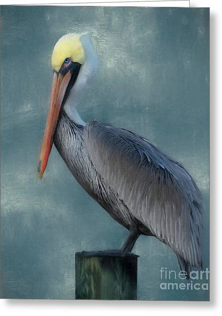 Greeting Card featuring the photograph Pelican Portrait by Benanne Stiens