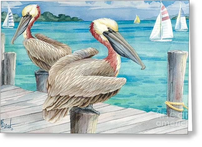 Pelican Sails Greeting Card
