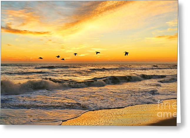Pelicans At Sunrise  Signed 4651b 2  Greeting Card