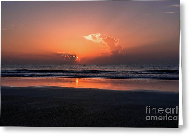 Pelicans At Sunrise Greeting Card