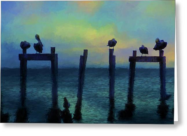 Greeting Card featuring the photograph Pelicans At Sunset by Jan Amiss Photography