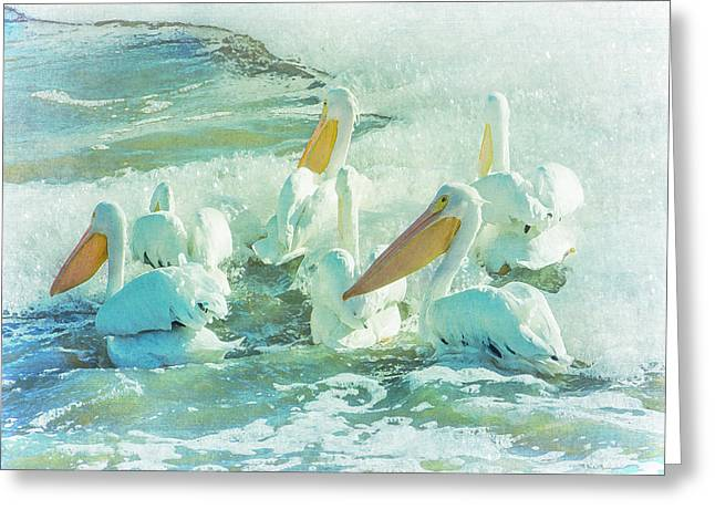 Pelicans On The Tide Greeting Card