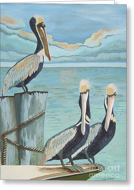 Pelicans Three Greeting Card by Jennifer  Donald