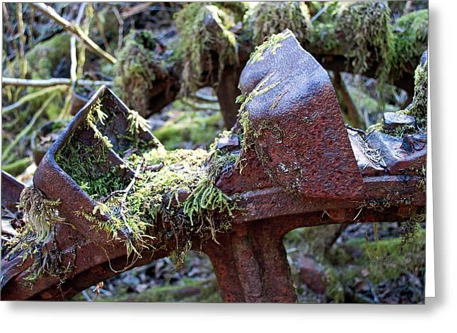 Pelton Water Wheel Closeup - Treadwell Mine Greeting Card