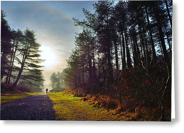 Pembrey Country Park 1 Greeting Card