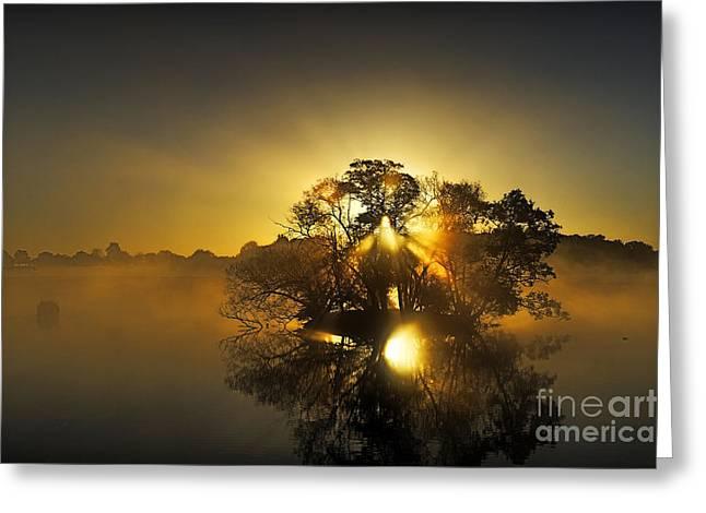 Pen Ponds Sunrise Greeting Card by Richard Allen