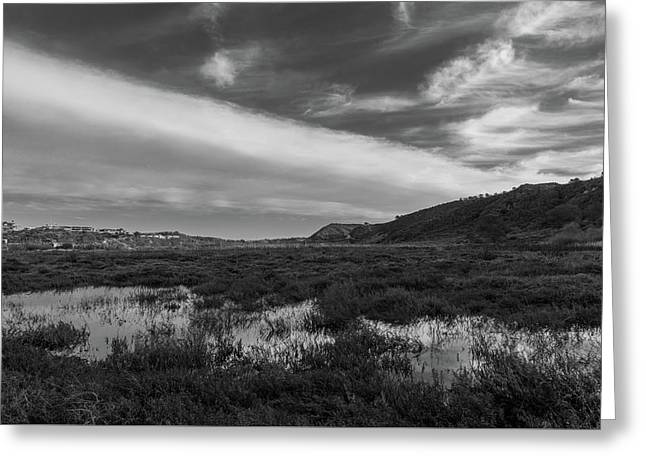 Penasquitos Creek Marsh Greeting Card