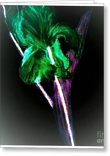 Pencil Sketch Iris Digital Painting Greeting Card
