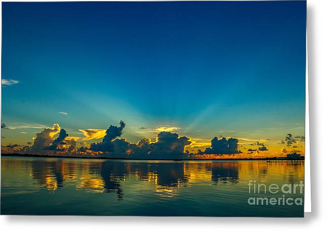 Penetrating Rays Greeting Card by Tom Claud