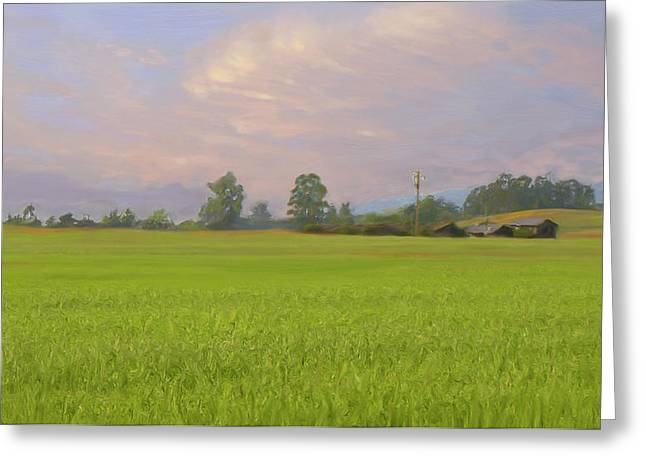 Penngrove Field Greeting Card by Thomas  Hansen