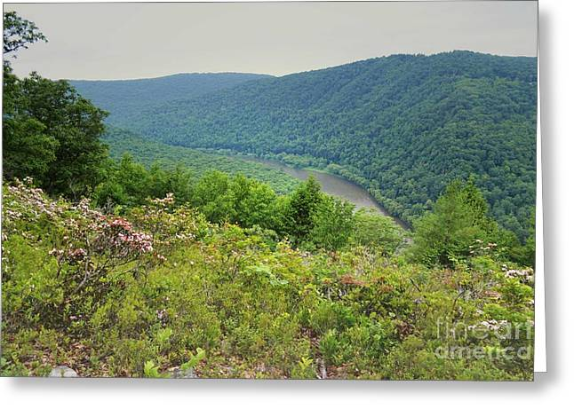 Pennsylvania Mountain Outlook Greeting Card by Andrea Hazel Ihlefeld