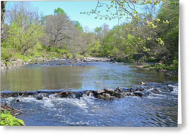 Pennypack Creek - Philadelphia Greeting Card by Bill Cannon