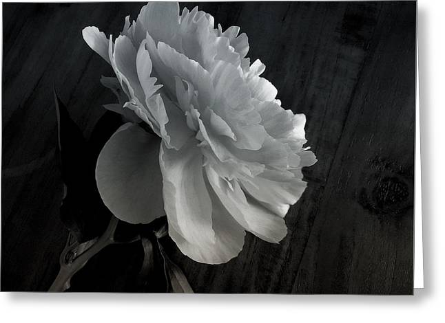 Greeting Card featuring the photograph Peonie by Sharon Jones
