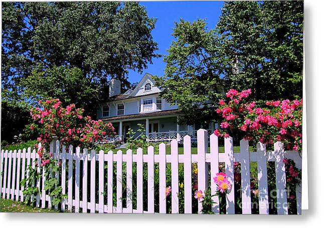 Peonies And Picket Fences Greeting Card