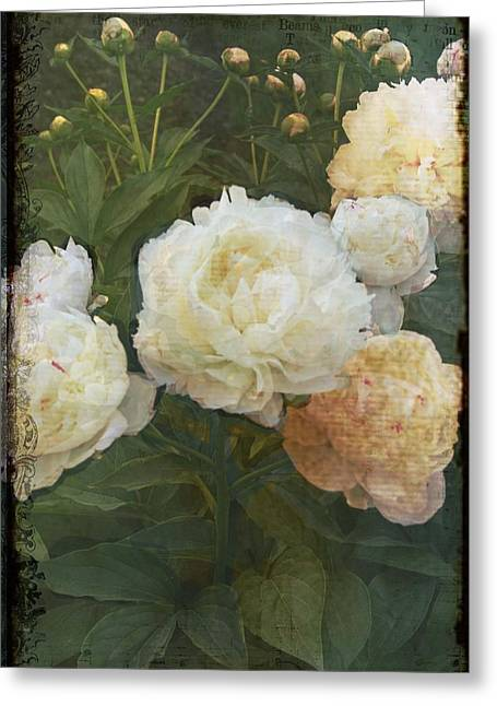 Greeting Card featuring the photograph Peony by Rosemary Aubut