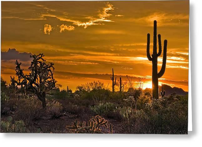 Peralta Arizona Sunset Greeting Card