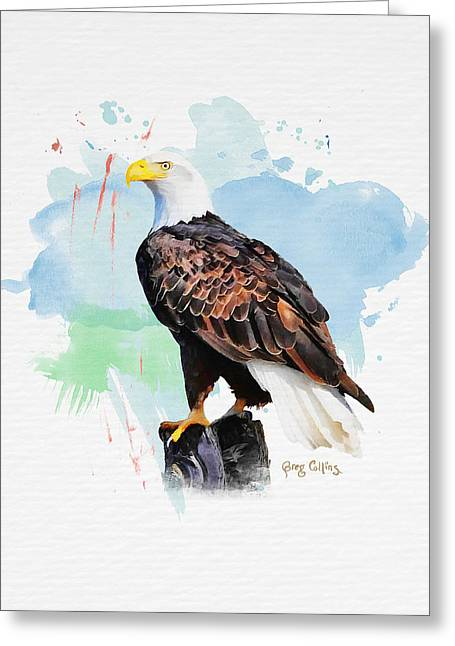 Perched Eagle Greeting Card by Greg Collins