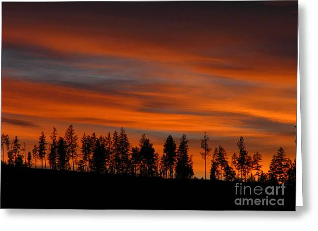 Perfect Evening Greeting Card by Greg Patzer