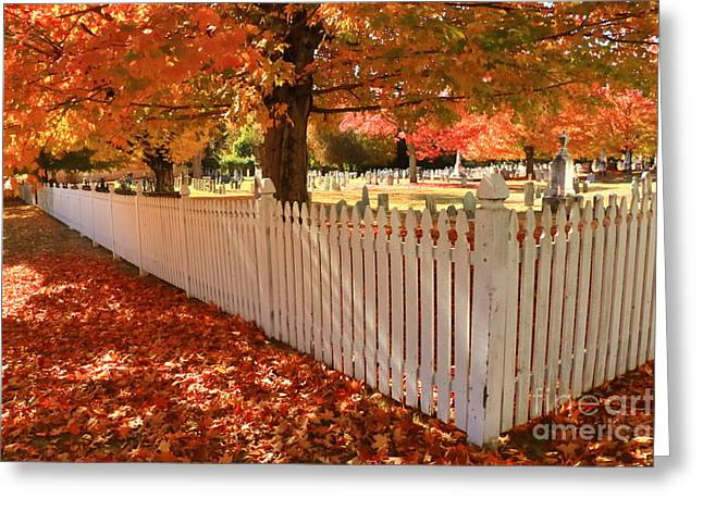 Perfect Picket Fence Greeting Card by Elizabeth Dow
