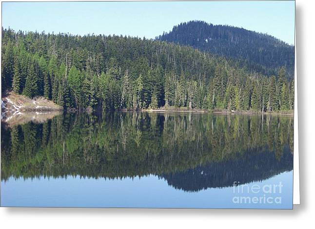 Greeting Card featuring the photograph Perfect Reflection by Charles Robinson