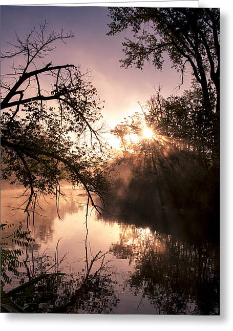 Perfect Reflections Greeting Card by Annette Berglund