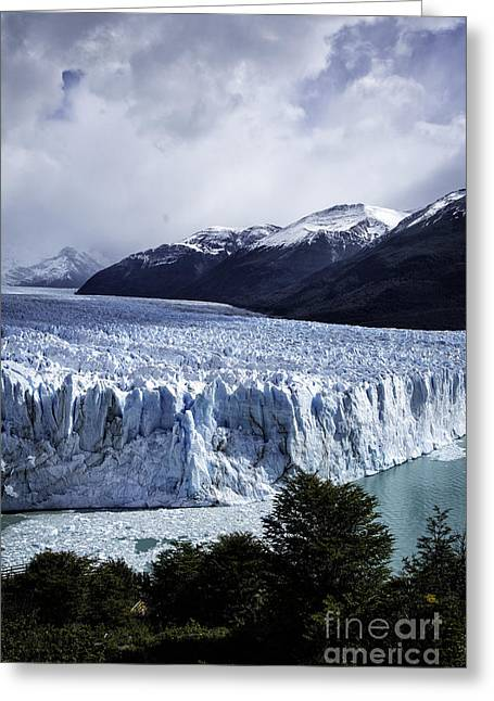 Perito Moreno Glacier 8 Greeting Card by Timothy Hacker
