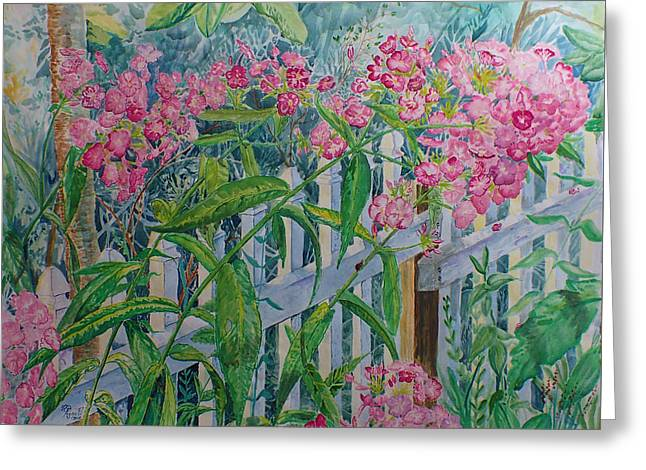 Perky Pink Phlox In A Dahlonega Garden Greeting Card