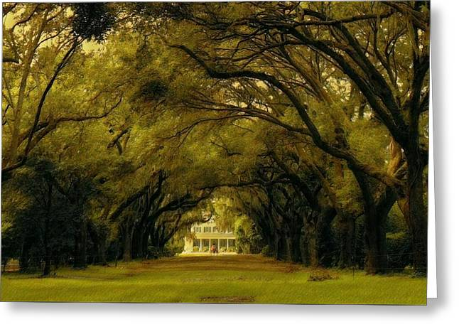 Perplexing Plantation Greeting Card