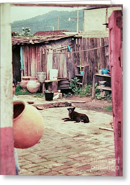 Greeting Card featuring the photograph Perro On The Patio by Charles McKelroy
