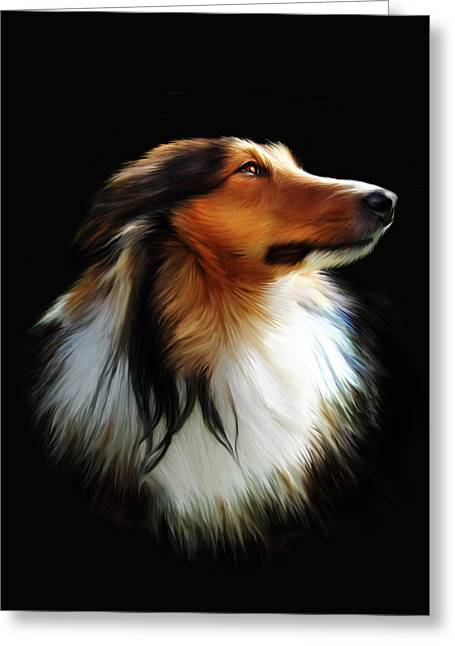 Shetland Dog Greeting Cards - Persephone Greeting Card by Julie L Hoddinott
