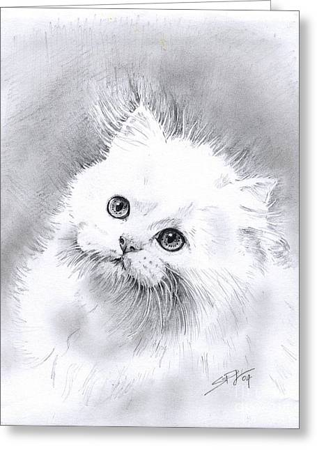 Persian Cat Greeting Card by Sandra Phryce-Jones