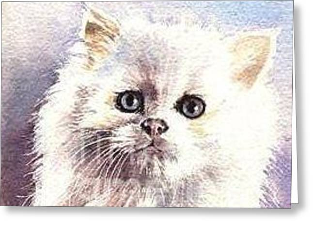 Greeting Card featuring the painting Persian Kitten by Sandra Phryce-Jones