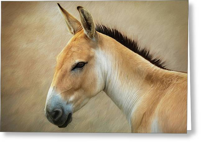 Persian Onager Greeting Card