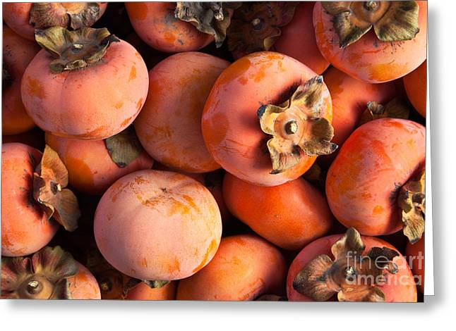 Persimmon Harvest Greeting Card by Inga Spence