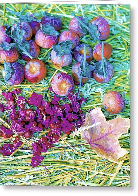 Persimmons And Bittersweet Image Greeting Card by Paul Price