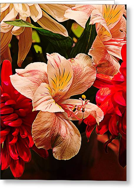 Peruvian Lily Greeting Cards - Peruvian Lily Grain Greeting Card by Bill Tiepelman