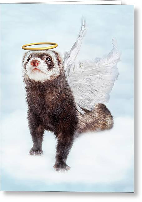 Pet Ferret Angel In Clouds Greeting Card