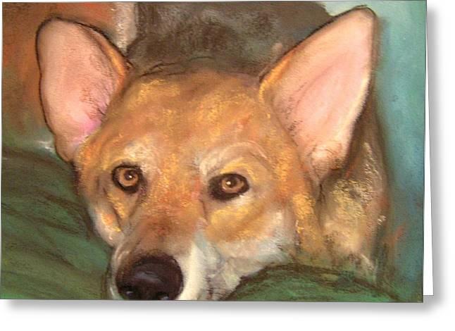 Pet Portrait Greeting Card by Darla Joy  Johnson