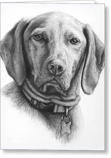Pet Portraits For Your Gorgeous Pets Greeting Card